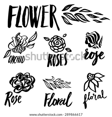 Set of vector floral design elements, freehand drawing - flowers and leafs - stock vector