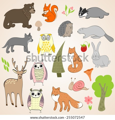 Set of vector hand drawn forest animals - stock vector