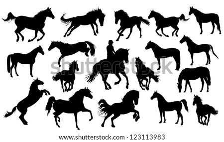 Set of vector horses silhouettes - stock vector