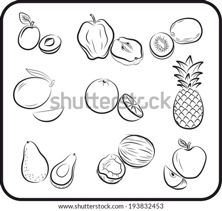 set of vector icons on the theme of fruit - stock vector