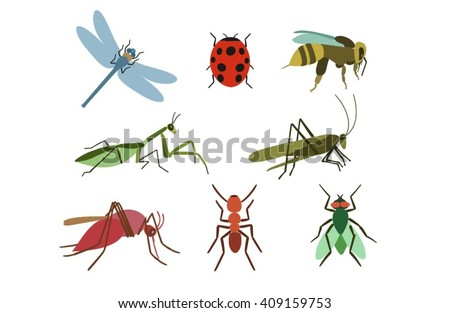 Set of vector insects. Insects colorful set. Insect Collection  of gnat, ant, fly, bee, mosquito, dragonfly, beetle, ladybug,mantis,grasshopper. Insect isolated on white background. Insect cartoon set - stock vector