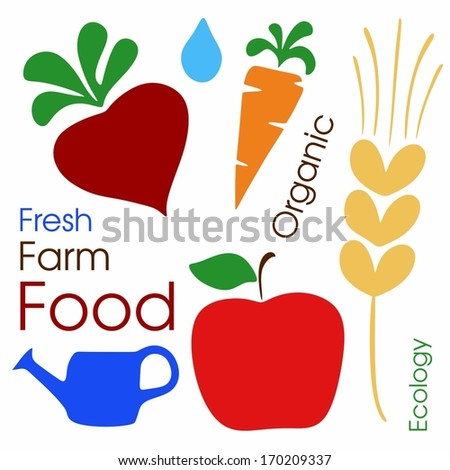 Set of vector organic farm vegetables and fruits - stock vector
