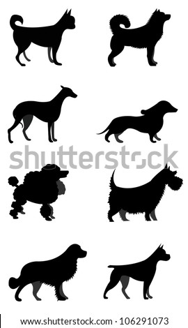 Set of Vector Silhouettes Dogs Isolated on White Background - stock vector