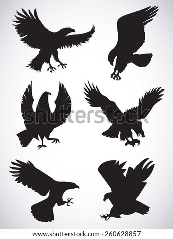 Set of vector silhouettes of  eagles  - stock vector