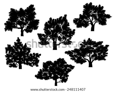 Set of vector silhouettes of oak trees with leaves. - stock vector