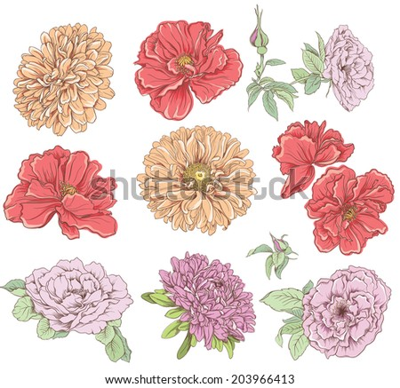 Set of vintage hand drawn flower. Vector illustration. Big selection of various flowers isolated on white background. - stock vector