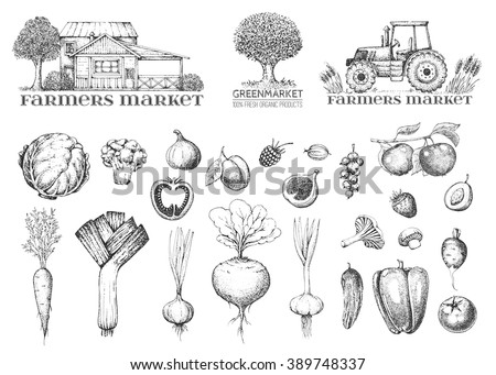 Set of vintage retro farm logo. Label and design element. Tree, tractor, house. Vegetables, fruit and berry. Logotype. Fresh eco farm product. Hand drawn illustration. Farmers market. Style engraving. - stock vector