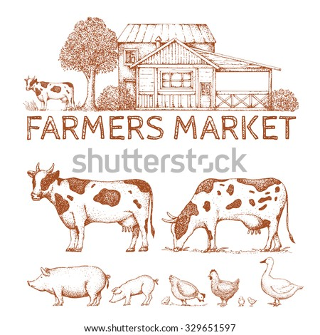 Set of vintage retro farm logo. Labels and design elements. Tree, animals, house. Logotype. Hand drawn illustration. Farmers market. Cow, goose, pig, chicken. - stock vector