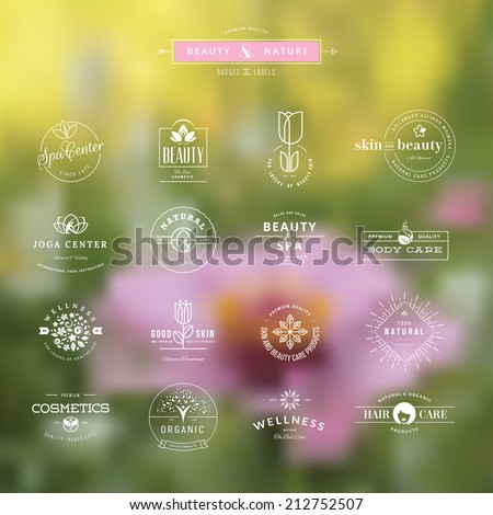 Set of vintage style elements for labels and badges for beauty, health care, cosmetics, spa and wellness, on the nature background    - stock vector