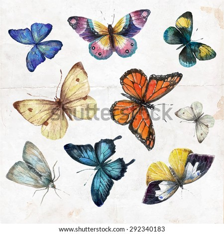 Set of  watercolor butterflies, vector illustration. Collection of hand drawing butterflies. - stock vector