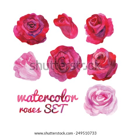 Set of 7 watercolor roses. Hand drawing. - stock vector