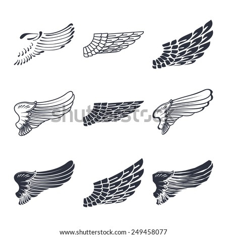 Set of wings isolated on white vector illustration - stock vector
