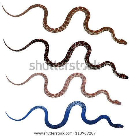 Set pretty realistic snakes - stock vector
