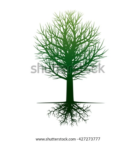 Shape of Green Tree and Roots. Vector Illustration. - stock vector