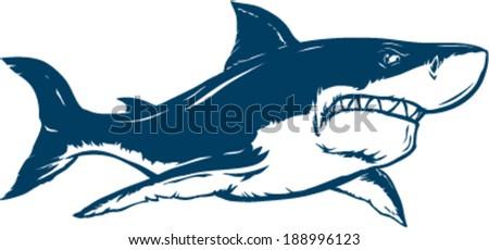 Shark vector illustration - stock vector
