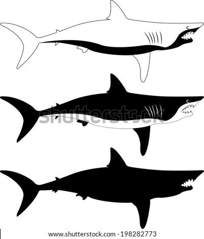 Shark vector silhouette - stock vector