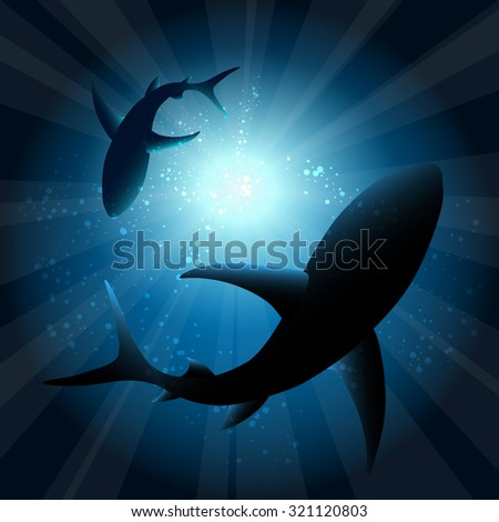 Sharks under water. Fish in ocean, animal nature life, swimming wildlife, vector illustration - stock vector