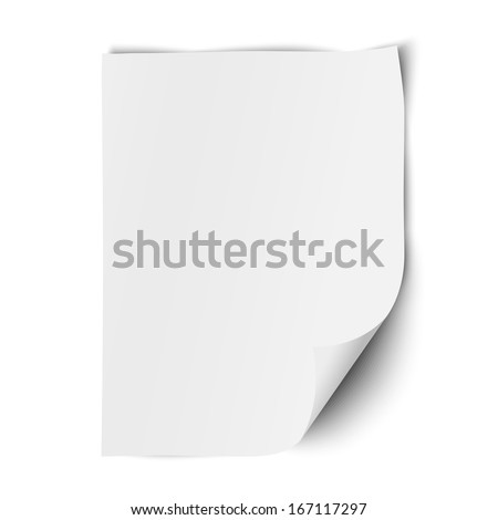 Sheet of paper isolated on white background - stock vector