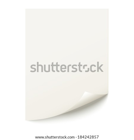 Sheet of paper on a white background. - stock vector