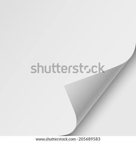 sheet of paper, realistic vector illustration - stock vector