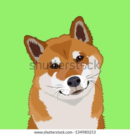 Shiba inu, The buddy dog - stock vector