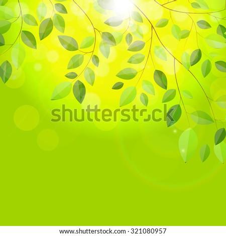Shiny Spring Natural Leaves Background. Vector Illustration EPS10 - stock vector
