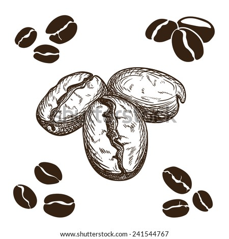 Silhouette and hand drawn coffee beans.  - stock vector