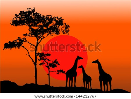 Silhouette illustration of family  giraffes - stock vector