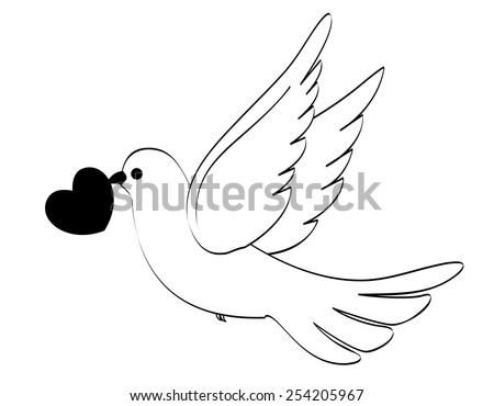 Silhouette of a pigeon / dove with a heart illustration isolated on white  - stock vector