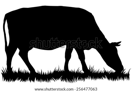 Silhouette of cow eating grass - vector illustration - stock vector