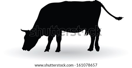 silhouette of cows grazing vector illustration - stock vector