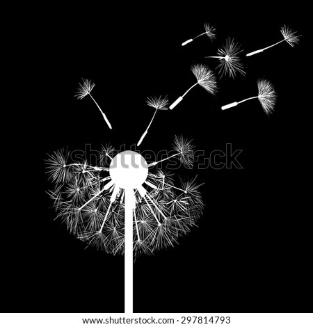 Silhouette of dandelion flowers. Abstract image. Vector Image Stock. - stock vector