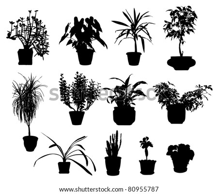 silhouette of different potted plants vector - stock vector