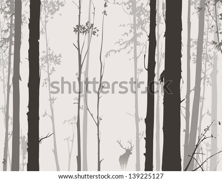 silhouette of the forest with deer - stock vector