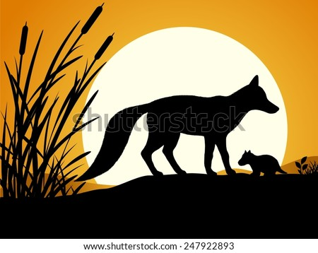 ninja silhouette red fox - photo #43
