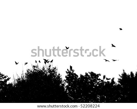 Silhouette of Treetops and Birds - stock vector
