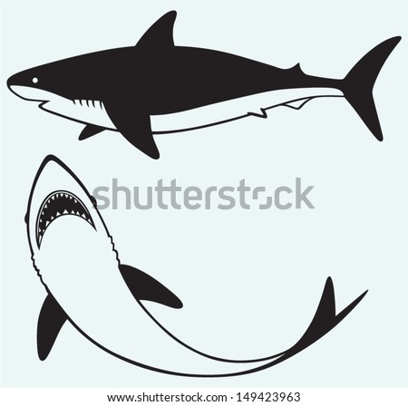 Silhouette shark isolated on blue background - stock vector