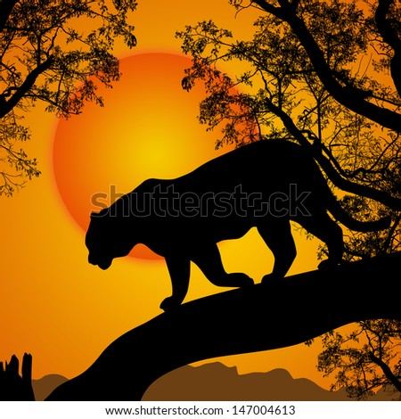 Silhouette view of panther on a tree at beautiful sunset, vector illustration - stock vector