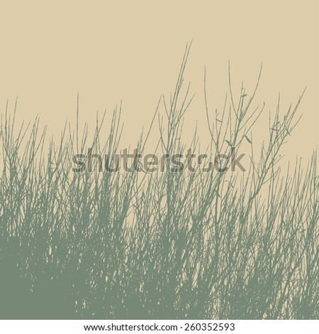silhouettes of bush. vector illustration. - stock vector