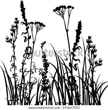 Silhouettes  of flowers and grass, vector illustration - stock vector