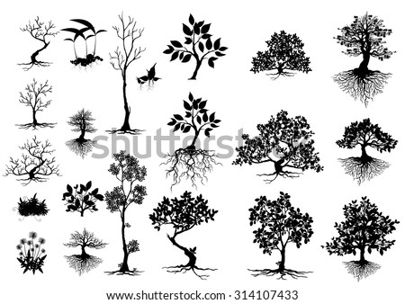 silhouettes of leaves,silhouettes of trees,Tree Branch Silhouettes,Tree branch with green leaves over white background,Tree Branch Silhouettes - stock vector