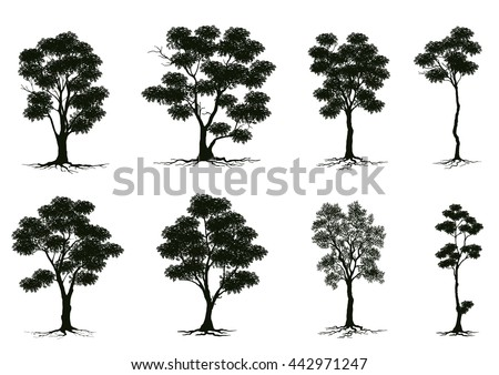 silhouettes of trees,tree casts a shadow,Season tree with green leaves,set brightly green tree isolated on white background,Tree with green leafage,collection of isolated summer tree   - stock vector