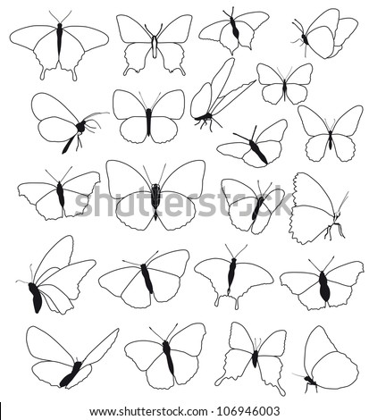 silhouettes, shape, outline of butterflies on a white background, vector - stock vector