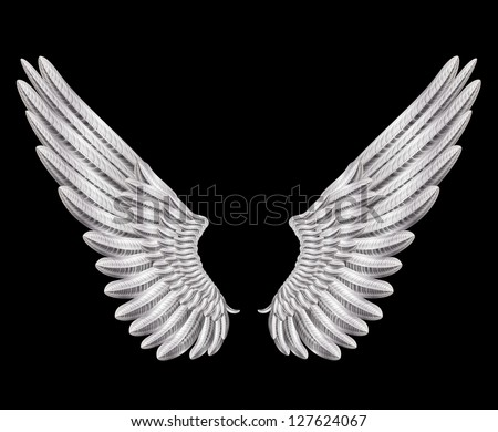 silver wings - stock vector