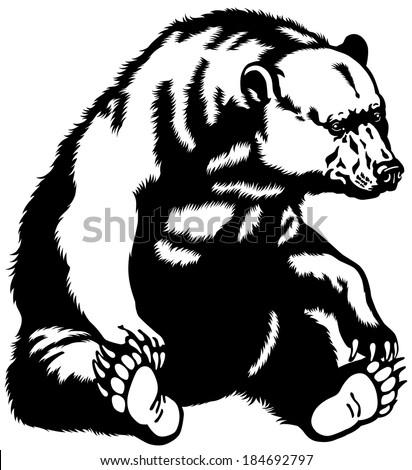 Sitting Bear Drawing Sitting Bear Black And White