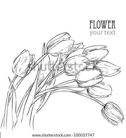 sketch flowers - stock vector
