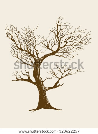 Sketch illustration of a dried tree - stock vector