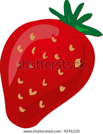 Sketch of a strawberry.Hand-drawn lineart look illustration - stock vector