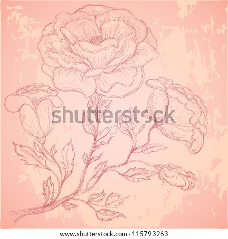 Sketch of rose branch on grungy texture - stock vector