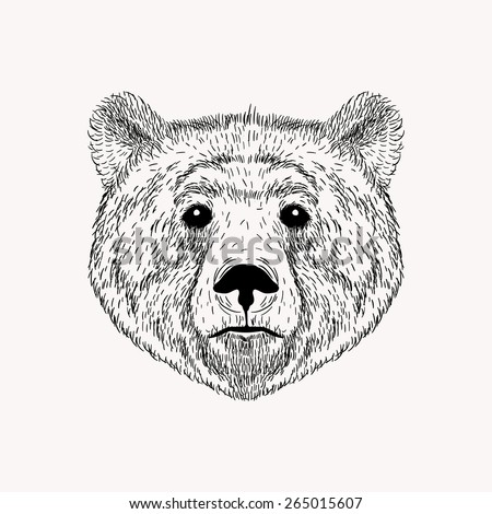 Sketch realistic face Bear. Hand drawn vector  illustration in Doodle style. Engraving sketch for tattoos. - stock vector